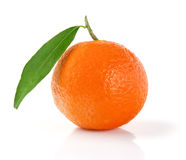 Mandarin Orange. Tangerine with Leaf. Mandarin  on White Stock Photo