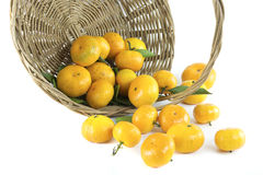 Mandarin orange in a basket. On white background Stock Photo