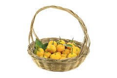 Mandarin orange in a basket. On white background Stock Photography