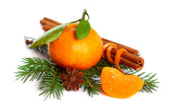 Mandarin orange, cinnamon, anise and tree branch. Isolated on white background-Christmas decoration Royalty Free Stock Images