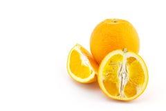 Mandarin orange citrus fruit slice on white background Royalty Free Stock Photos