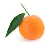Mandarin orange - citrus reticulata Stock Images