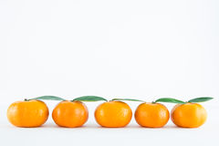Mandarin orange, Citrus reticulata. On white background Royalty Free Stock Image