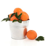 Mandarin Orange Fruit Stock Photo