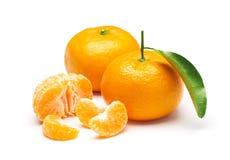 Mandarin orange isolated on white background Stock Images