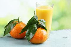 Mandarin orange and juice Royalty Free Stock Images