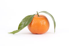 Mandarin Orange with Leaves. A mandarin orange with two leaves on a white background Stock Photography