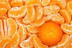 Mandarin orange Stock Photos