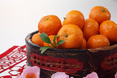 Mandarin orange Stock Image