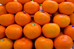 Mandarin orange on sales Royalty Free Stock Images