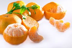 Mandarin Orange Sliced Royalty Free Stock Photography