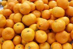 Mandarin orange tangerine Stock Images
