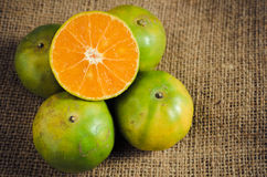 Mandarin orange,Tangerines Stock Image