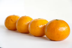 A mandarin orange. Under the background of a few white orange swing out of the shape of a very good material Stock Image