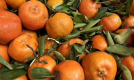 Mandarin oranges Stock Photo