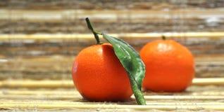 Mandarin oranges. Two mandarin orange fruits with leaf still life Stock Images