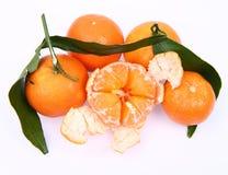 Mandarin oranges Royalty Free Stock Photography