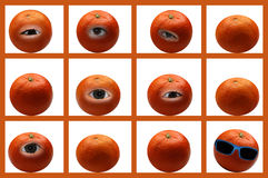 Mandarin oranges Royalty Free Stock Image