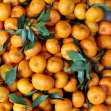Mandarin Oranges. Closeup View of an Many Mandarin Oranges in a Fruit Market Stock Images