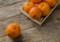 Mandarin Oranges - mandarin oranges Royalty Free Stock Images