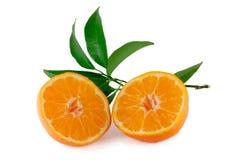 Mandarin på vit bakgrund Fotografering för Bildbyråer