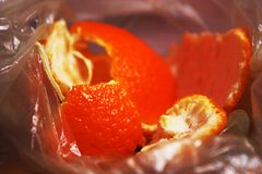 Mandarin peel royalty free stock photo