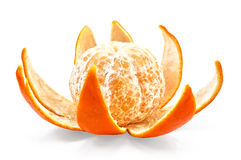 Mandarin on the peel by purified Royalty Free Stock Images