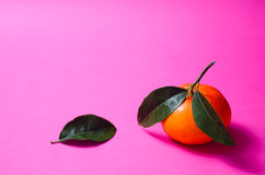 Mandarin on pink Royalty Free Stock Photos