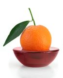 Mandarin scented candle Stock Image