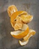 Mandarin segments with peel Stock Photography