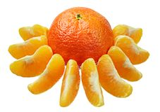 Mandarin with slices Royalty Free Stock Photography