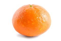 Mandarin som isoleras på vit bakgrund Arkivfoto