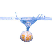 Mandarin splash in water isolated on white Stock Photos