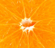 Mandarin or tangerine fruit macro Royalty Free Stock Image