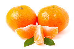 Mandarin. Tangerine with leaf isolated on white. Stock Photos