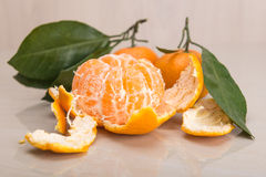 Mandarin or tangerine with leaves and branches on a marble table Stock Images