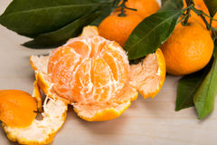 Mandarin or tangerine with leaves and branches on a marble table Royalty Free Stock Image