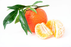 Mandarin. Tangerines with leaves Royalty Free Stock Photography