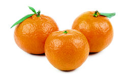Mandarin. Three ripe mandarins isolated on white background Royalty Free Stock Image
