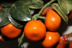 Mandarin tree made from stone. Ripe tangerines fruits on the branch royalty free stock photo
