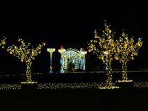 Mandarin tree Warsaw winter decorations. Warsaw light garden in Wilanow Royal Palace. Winter decoration Stock Images