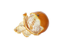 Mandarin with untreated skin. Mandarin, not cleared until the end of peel, on a white background Royalty Free Stock Photo