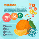 Mandarin vitamins infographics in a flat style. Vector illustration EPS 10 Royalty Free Stock Photos
