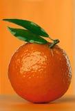 Mandarina Foto de archivo