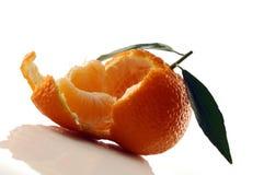 Mandarina Fotografía de archivo