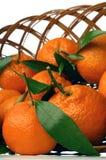 Mandarina Imagenes de archivo