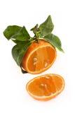 Mandarina abierta cortada Imagen de archivo libre de regalías
