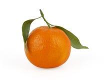 Mandarina aislada en blanco Foto de archivo libre de regalías