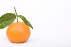 Mandarina aislada en blanco Imagenes de archivo