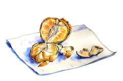 Mandarina anaranjada jugosa Foto de archivo libre de regalías